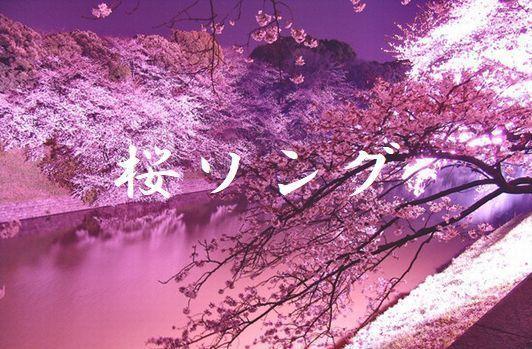 第31回 ★ 「桜ソング」