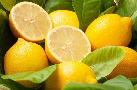 第310回 ★ 「レモン」